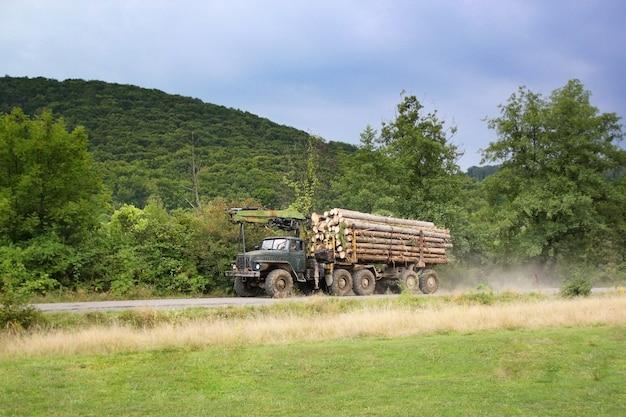 La déforestation. transport de bois de coupe dans le camion.