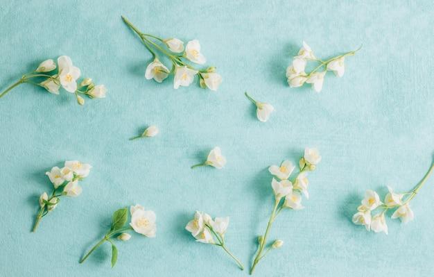 Délicates fleurs de jasmin sur fond rose