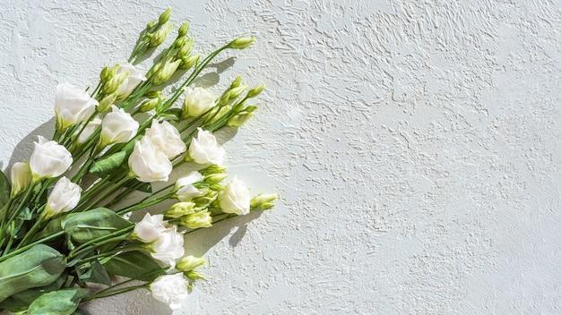 Délicates petites roses blanches sur fond de plâtre clair, espace copie, vue de dessus.