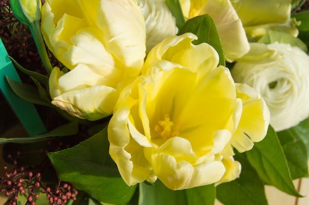 Délicates tulipes blanches et eustoma gros plan, vue de dessus