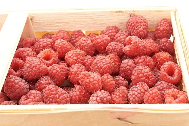 De délicieuses framboises rouges dans le panier