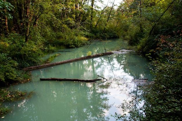 Delta glaciaire vert laiteux entouré de forêt