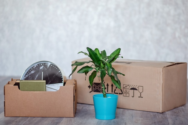Déménager dans un nouvel appartement avec des choses dans des boîtes en carton.
