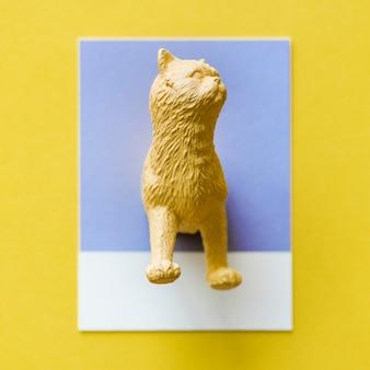 Un demi chat sur un papier coloré
