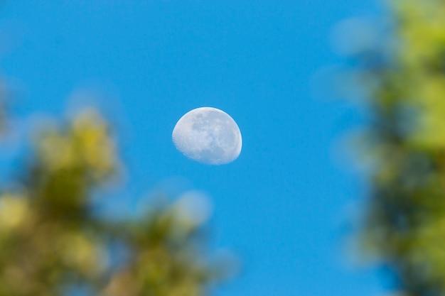 La demi-lune avec écran vert