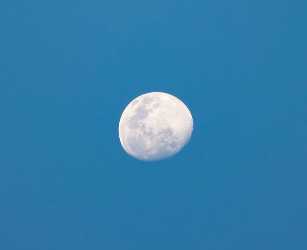 Demi-lune pendant la journée sur fond de ciel bleu