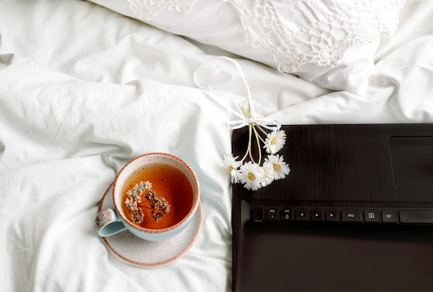 Dentelle ajourée, couverture en coton blanc. livre botanique, mug avec tisane naturelle à base de menthe, fleurs de marguerite d'été. petit déjeuner le matin au lit. provence et style rétro. propre confort et fraîcheur.