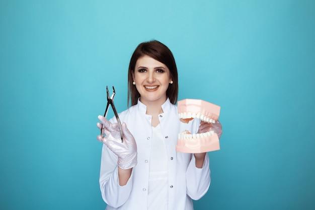 Dentiste femme souriante tenant dans les mains le modèle de mâchoire et d'instruments.