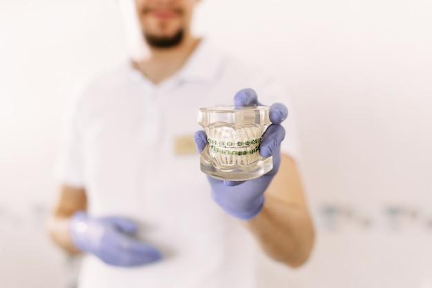 Dentiste portant des gants médicaux montre le modèle de mâchoire du patient avant de commencer le traitement en clinique dentaire, concept de soins de santé