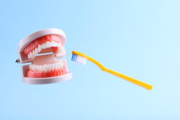 Les dents du modèle et la brosse à dents lévitent dans les airs sur fond bleu