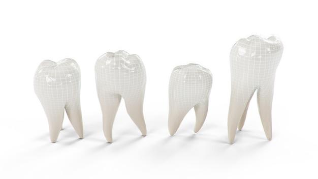 Dents protégées saines isolées sur fond blanc. denture.