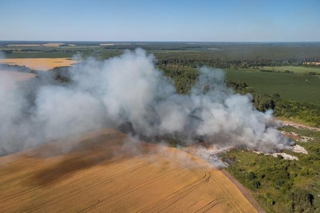 Dépotoir sur feu de forêt. concept de pollution de l'environnement