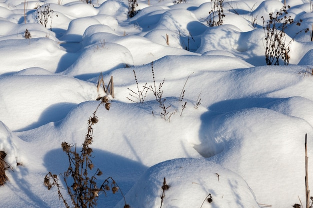 Dérives de neige