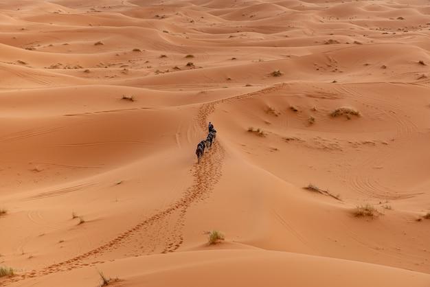 Désert du sahara à marrakech, maroc