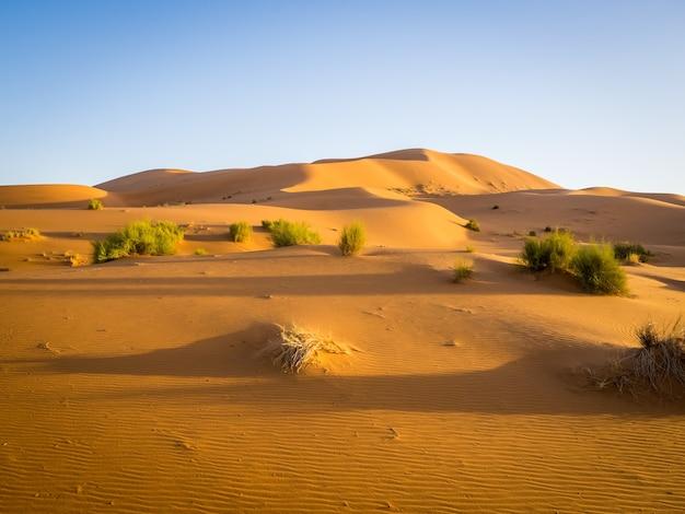 Désert du sahara sous la lumière du soleil et un ciel bleu au maroc en afrique