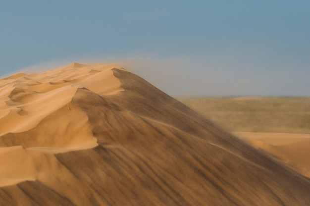 Désert avec des dunes de sable par une journée claire et ensoleillée. paysage désertique.