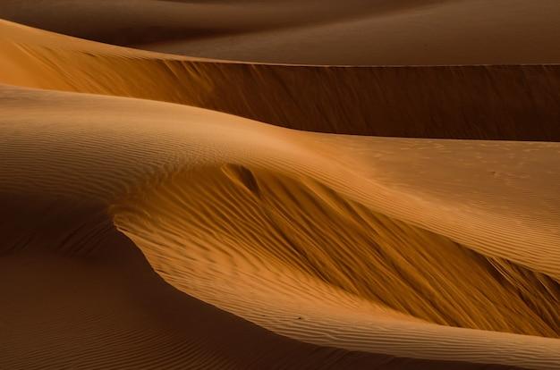 Désert avec dunes de sable