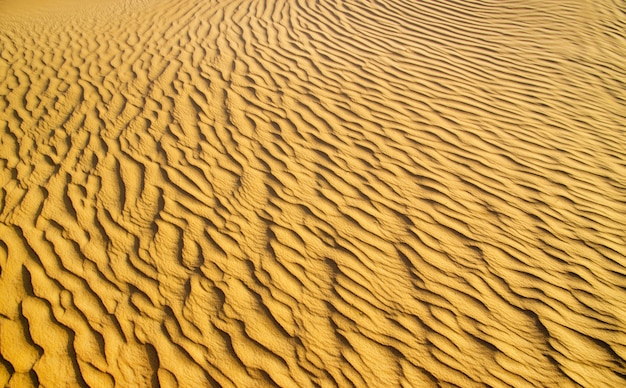 Désert d'or au coucher du soleil. texture sable.