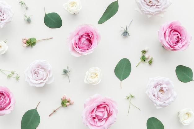 Design de fond de belles fleurs colorées