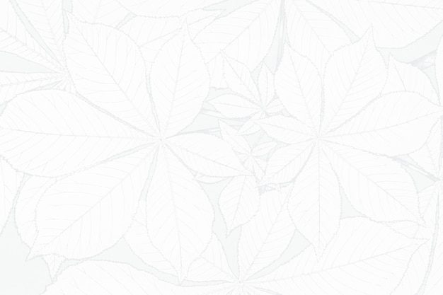 Design de fond texturé fleur blanche