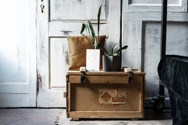 Design moderne du loft intérieur du salon. murs en bois gris avec copyspace gratuit. tendance verte dans des pots en béton sur une vieille boîte en bois.