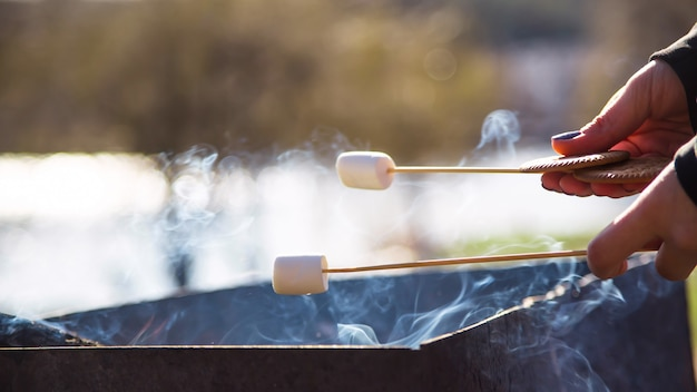 Dessert de cuisine avec des guimauves au coin du feu lors d'un pique-nique dans la nature