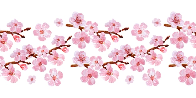 Dessin de bordure transparente aquarelle avec des branches et des fleurs de cerisier