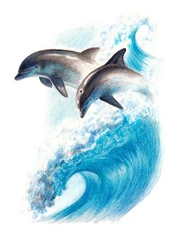 Dessin en couleur: deux dauphins sur une vague. crayons aquarelle