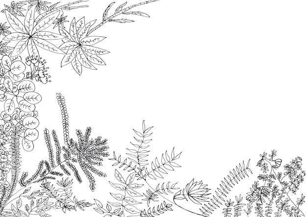 Dessin à la main de feuilles et de fleurs à l'encre noire. en bas et à gauche, sur papier blanc