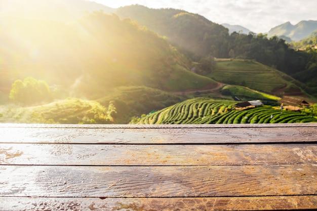 Dessus de table en bois sur le jardin de plantation de thé