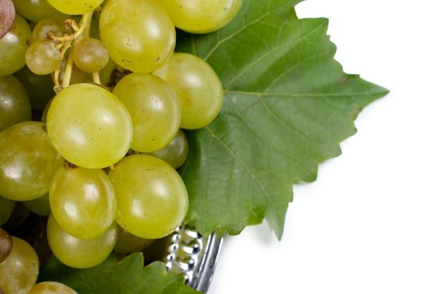 Détail d'une grappe de raisins verts doux frais sur une plaque de métal avec des feuilles de vigne sur fond blanc avec copyspace