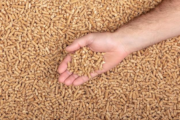 Détail d'une main contenant des granulés de bois