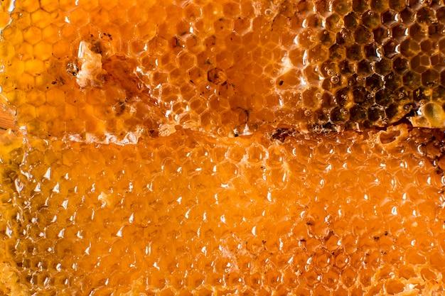 Détail nid d'abeille