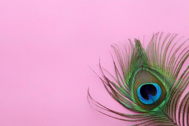 Détail d'oeil de plume de paon sur une texture abstraite de luxe de fond rose pour le papier peint de paon