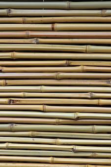 Détail de rideau de style oriental en tiges de bambou