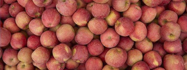 Détail de la texture des pommes, image de la bannière avec espace de copie