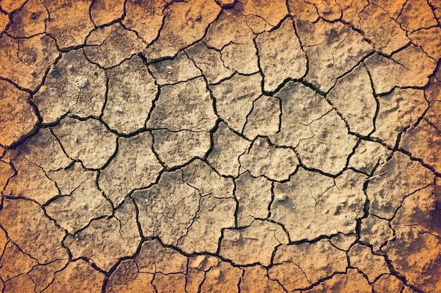 Détails du sol fissuré sec
