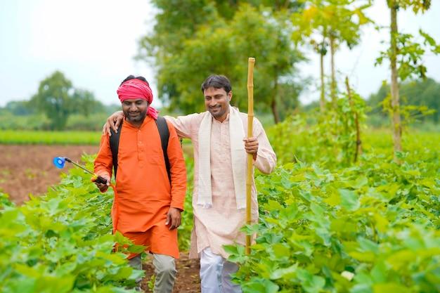 Deux agriculteurs indiens travaillent et discutent dans un champ de coton vert.