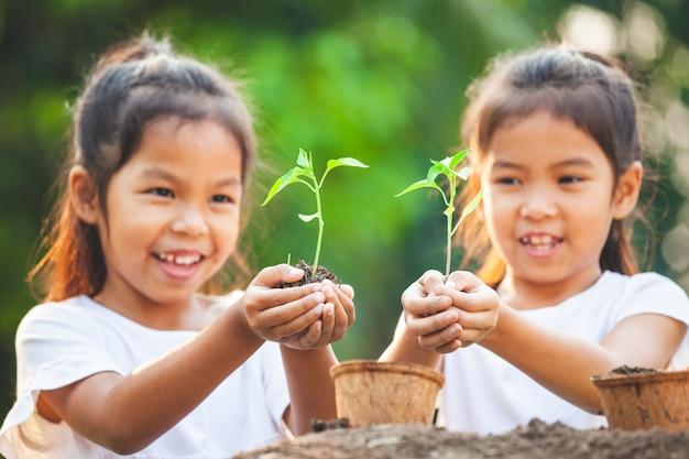 Deux, asiatique, enfant, filles, tenue, jeune, arbre, planter, recyclé, fibre, pots, ensemble, jardin