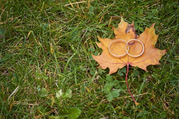 Deux bagues de mariage or sur une feuille d'érable orange sur fond d'herbe verte