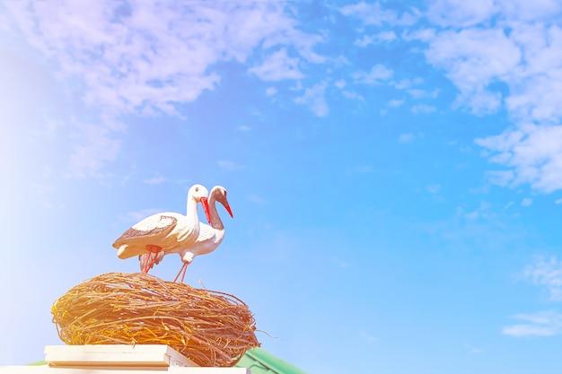 Deux cigognes matures noires et blanches à becs rouges assis au sommet d'une cigogne
