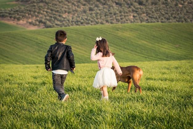 Deux enfants marchant au pré avec chien boxer