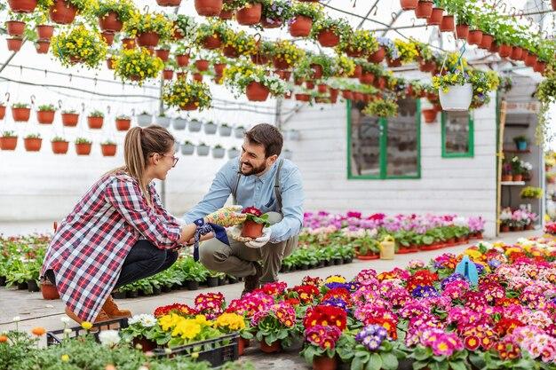 Deux entrepreneurs souriants accroupis dans une serre et organisant des fleurs.