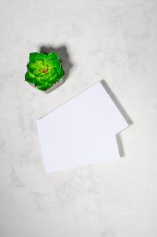 Deux feuilles de papier pour une inscription et une plante succulente sur fond de béton. vue de dessus à plat au-dessus. scène de maquette