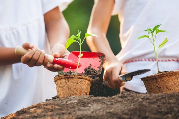 Deux filles asiatiques enfant plantation jeune arbre dans des pots de fibres de recyclage ensemble dans le jardin avec plaisir