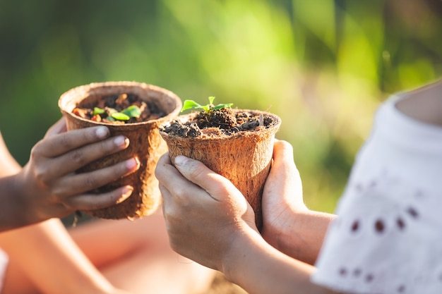 Deux filles asiatiques tenant de jeunes plants dans des pots de fibres recyclés