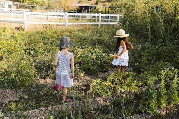 Deux filles marchant dans le champ