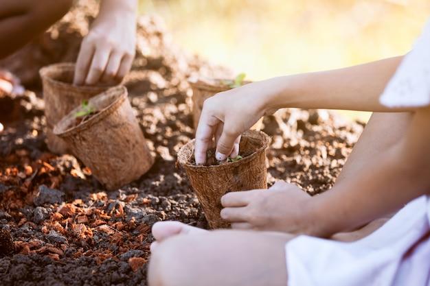 Deux fillettes asiatiques plantant de jeunes plants dans des pots en fibres recyclées dans le jardin
