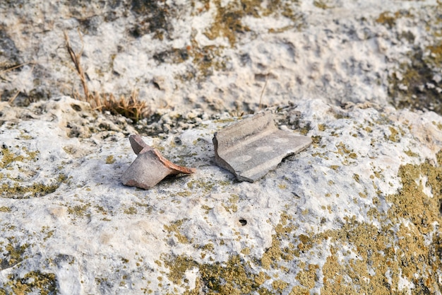 Deux fragments de poterie antique se trouvent parmi les pierres
