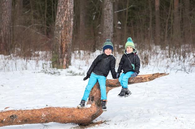 Deux frères dans la forêt d'hiver